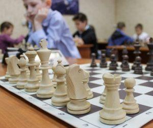 Кисловодские шахматисты – призеры краевого этапа соревнований «Белая ладья»