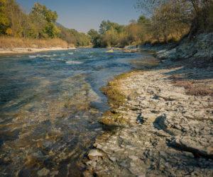 Более 4 километров берегов очистят в рамках общероссийской акции «Вода России»