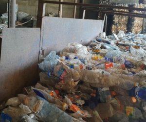 Пластик, собранный во время эко-квеста, отправлен на переработку