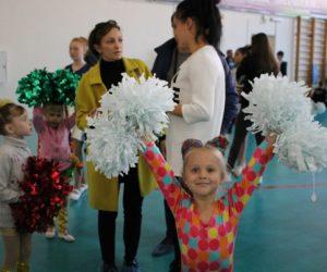 Открытый Кубок Ставропольского края по чир-спорту