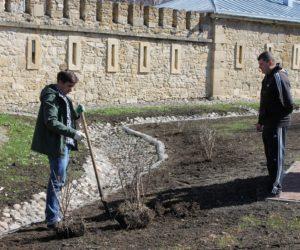 День Земли посвятили благоустройству исторической части города