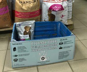 Фонд помощи животным «Преданное сердце» запустил акцию #ЩедрыеВыходные