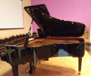 В музыкальной школе появились новые инструменты